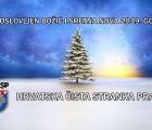 PREDSJEDNIK HČSP-a DAVOR TRBUHA ČESTITAO BOŽIĆ I NOVU 2019. GODINU
